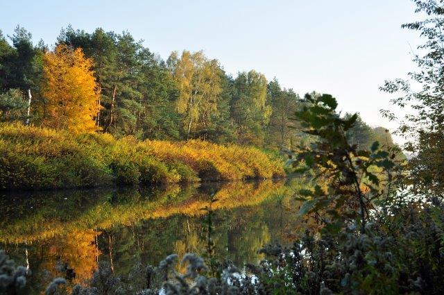 malowniczy jesienny widok Kanału Żerańskiego