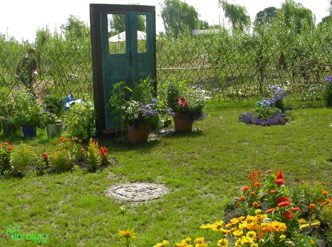 drzwi i donice pełne kwiatów